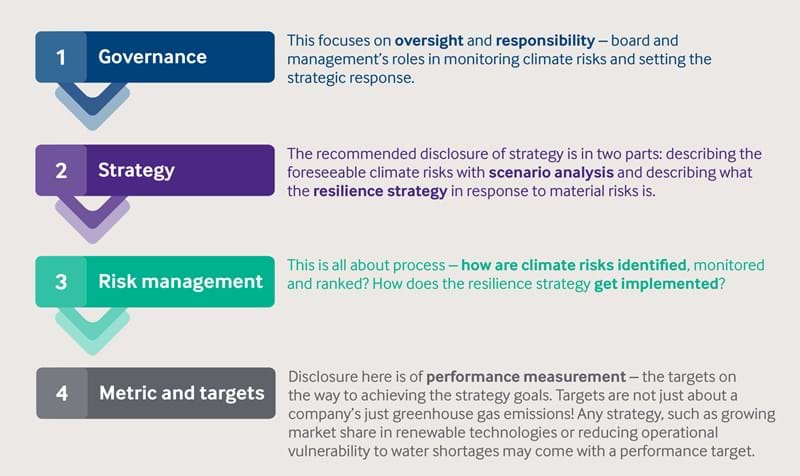 Flow chart infographic showing progression from governance, strategy, risk management through to metric and targets.