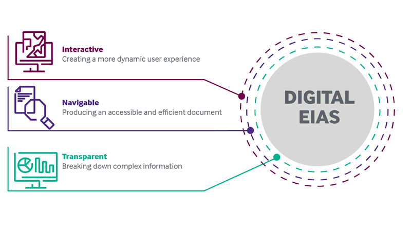 Digital EIAS Graphic.png